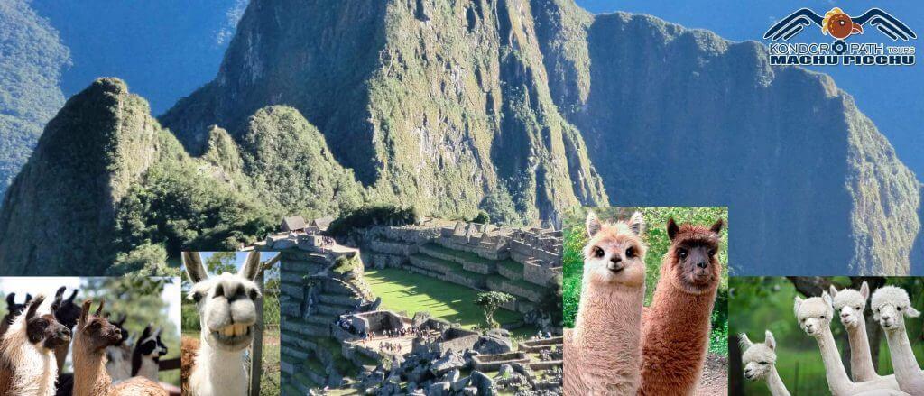 New itinerary when entering Machu Picchu 2019
